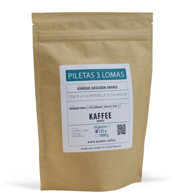 Piletas 3 Lomas Bourbon Tekisic, Fully Washed - 1