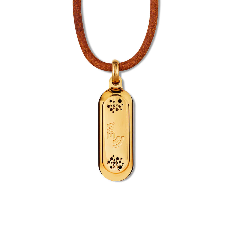 Wireless Earth Pendant - Premium Edition - Wireless Earth Online Shop