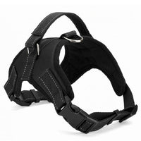 Dog Pet Harness