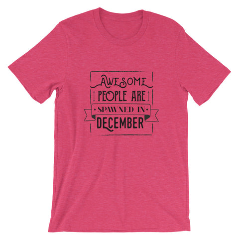 Image of Born in December T Shirt - Funny and Cute Birthday Gifts T Shirt