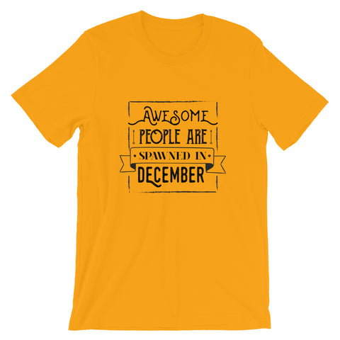 Born in December T Shirt - Funny and Cute Birthday Gifts T Shirt