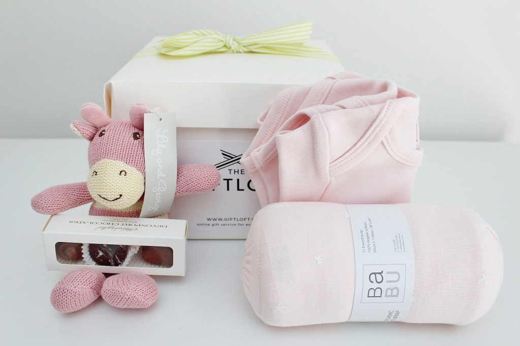 Babu Organic Baby Basics Hamper | Newborn Baby Girl | The Gift Loft (NZ)