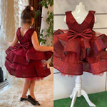 Special Edition Girls Burgundy Dress