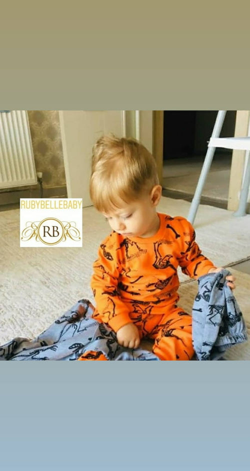 Dinosaur Pajamas Set