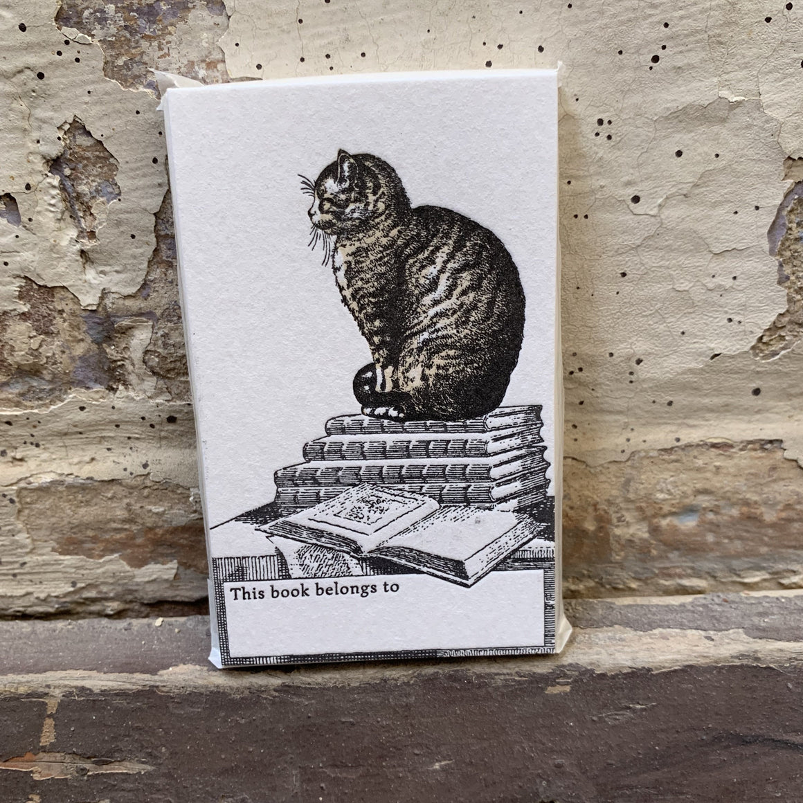 Letterpress Bookplates - Cat