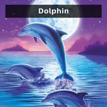 Dolphin diamond painting kits