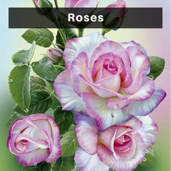 Rose diamond painting kits
