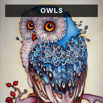 Owl Diamond Painting Kits