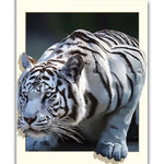 3D Tiger - Diamond Painting Kit