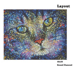 Glass Cat - Diamond Painting Kit