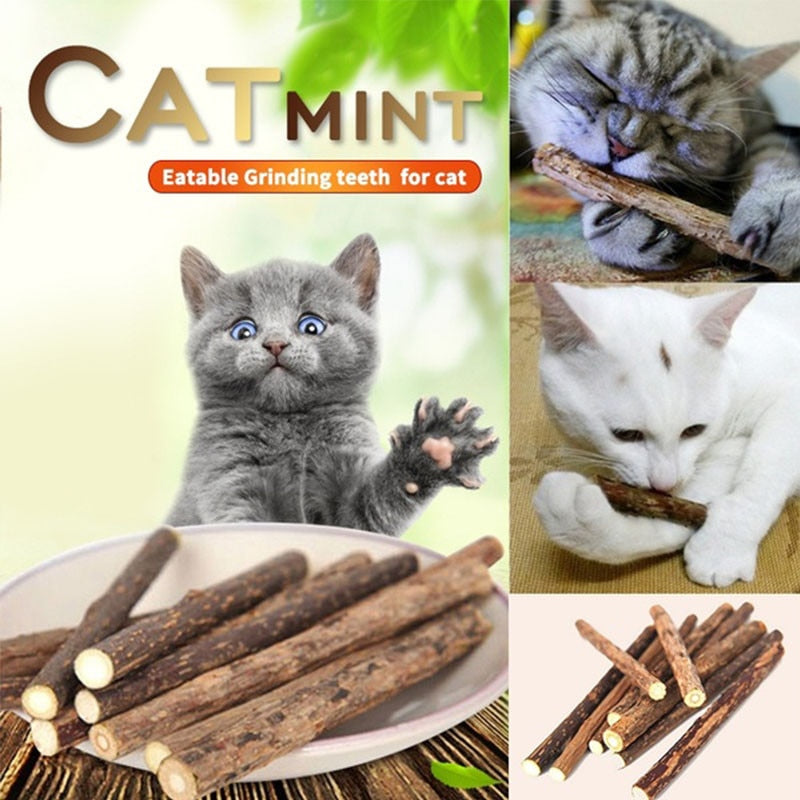 Cat Teeth Cleaning Sticks