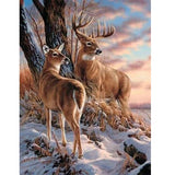 Deer Gaze Diamond Painting kit