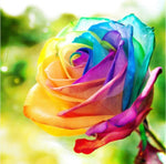 Rainbow Rose - Diamond Painting Kit