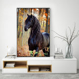 Black Horse - Diamond Painting Kit