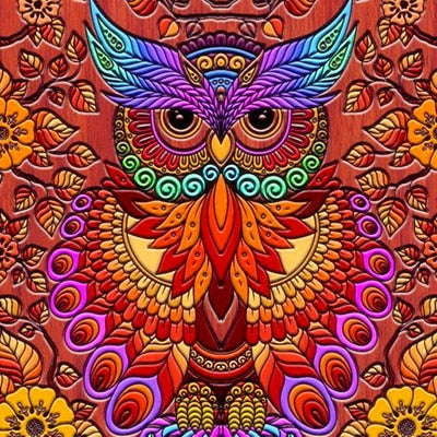 Abstract Owl - Diamond Painting Kit