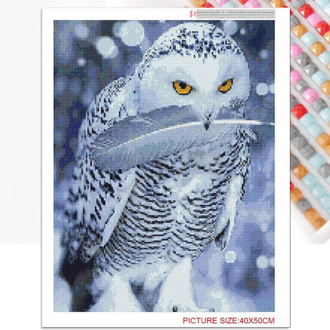 Owl With Feather - Diamond Painting Kit