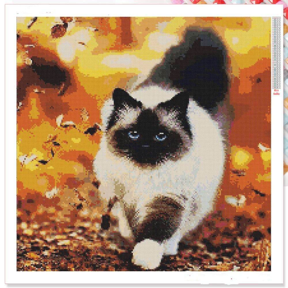 Cat Walk - Diamond Painting Kit