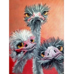 Ostrich Triplet Diamond Painting kit