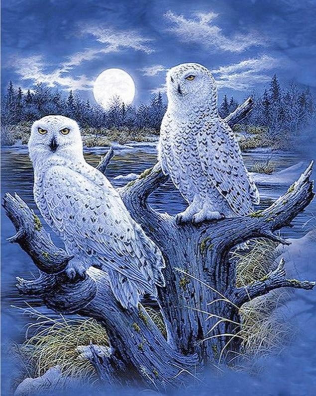 Animal Diamond Painting , Bird Diamond Painting