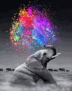 Elephant Rainbow Spark - Paint By Number Kit