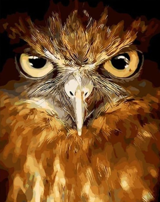 Eagle Gaze - Paint By Number Kit