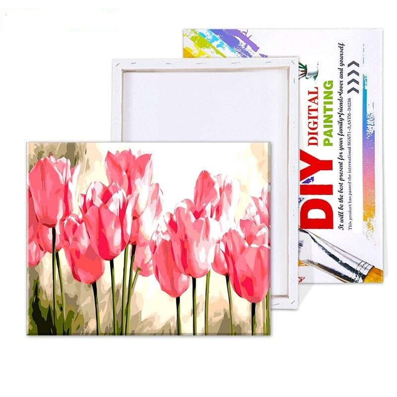 Pink Tulips - Paint By Number Kit