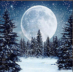 Snowfall Moon - Diamond Painting Kit
