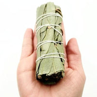 "Eucalyptus Smudge Wand Stick 4"" - Incense and Herbs"