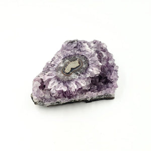 Amethyst Geode Polished Extra Quality 1.0kg 35oz - Elevated Metaphysical