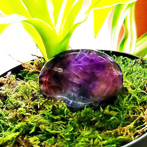 Amethyst Worry Stone Palm Stone - Elevated Metaphysical
