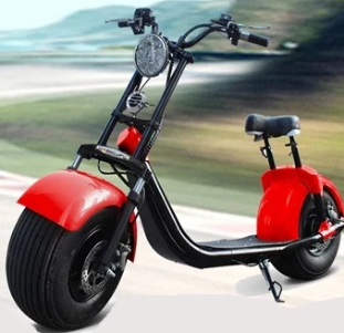 Electric Motor Scooter 1000W/1500W/2000W for Adults Y3