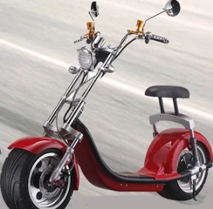 Electric Motor Scooter 1000W/1500W/2000W for Adults Y6