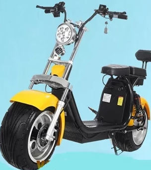 Electric Motor Scooter 1000W/1500W/2000W for Adults Y8P