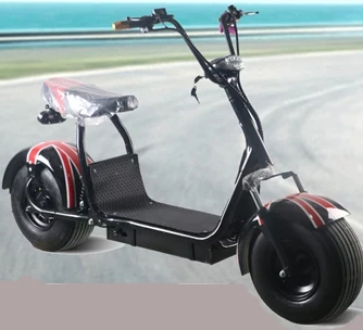 Electric Motor Scooter 1000W/1500W/2000W for Adults YIB