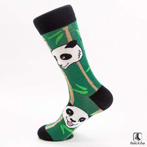 Panda Panda Combed Cotton Socks - Socks to Buy 2