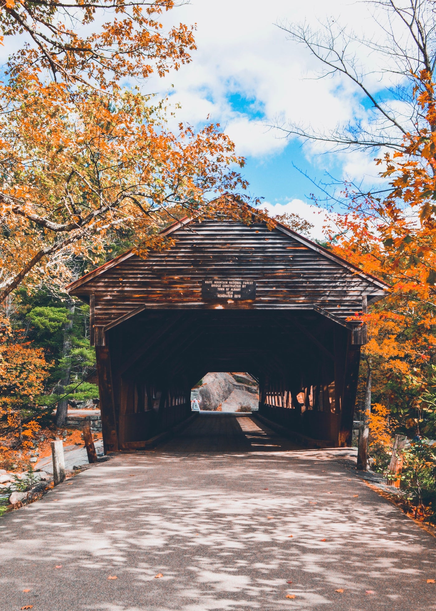 Albany Covered Bridge Print/Fall in New England Series - Salt and Branch
