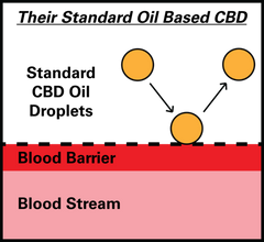 Standard CBD Oil Droplet Size Blood Barrier Diagram