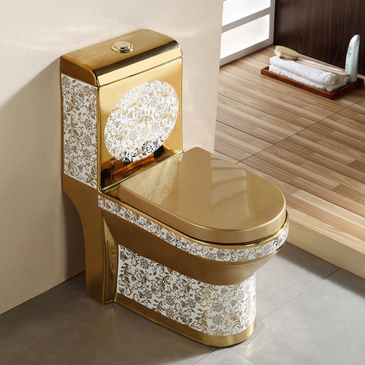 Ceramic One Piece Dual Flush Toilet with Soft Closing Seat Golden Color