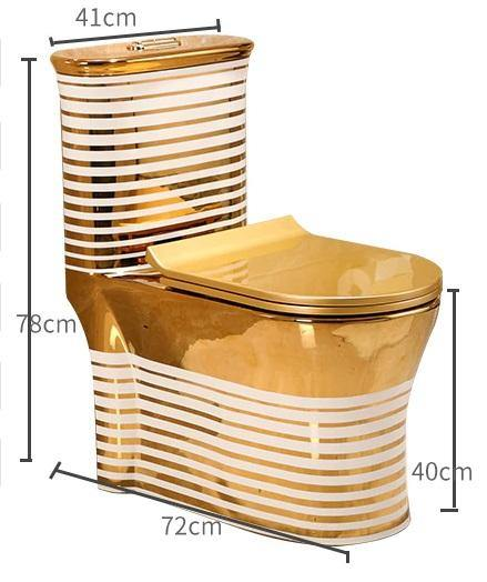 Ceramic One Piece Dual Flush Toilet with Soft Closing Seat Gold Color - Home Store Cart