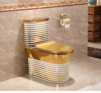 Ceramic One Piece Dual Flush Toilet with Soft Closing Seat Gold Color