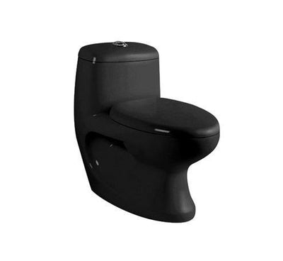 Ceramic One Piece Dual Flush Toilet with Soft Closing Seat Black Color