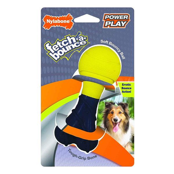Nylabone Fetch-A-Bounce