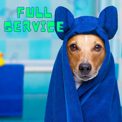Full Service Dog Bath