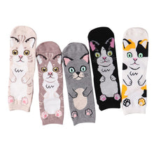 Load image into Gallery viewer, New 2020 Harajuku Cotton Women Socks Cat Face Pattern Socks Personality Female Calcetines Women Socks Autumn Winter Sock Meias