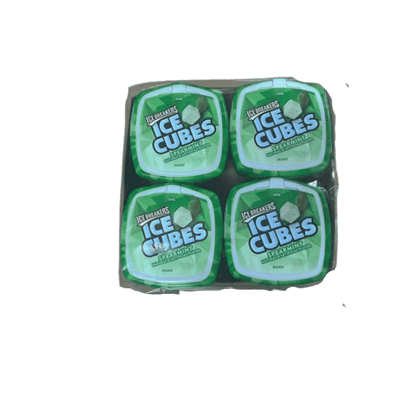 Ice Breakers Ice Breakers Ice Cubes Sugar-Free Gum, Bottle Packs, Spearmint, 4 pk 40 ea