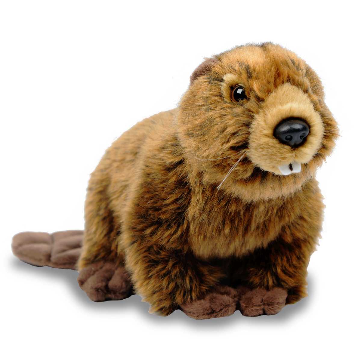 North American beaver plush