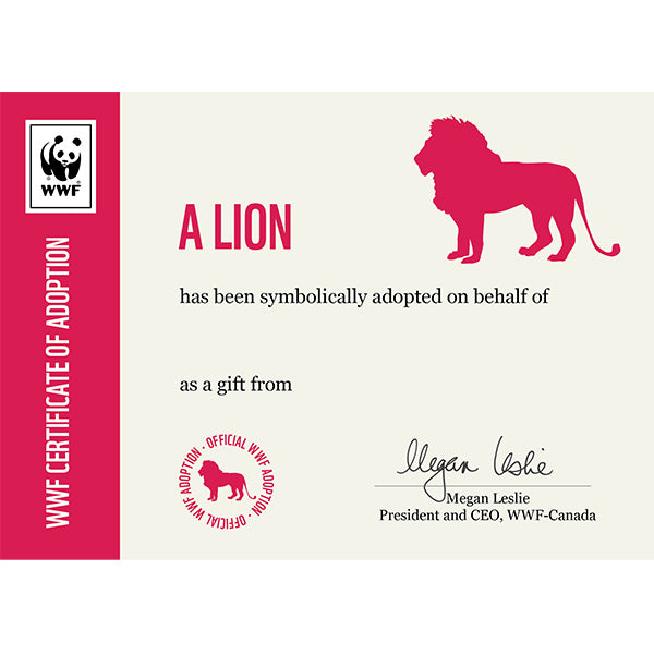 Lion adoption certificate