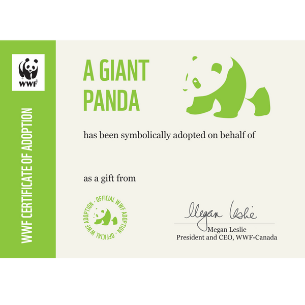Giant panda adoption certificate