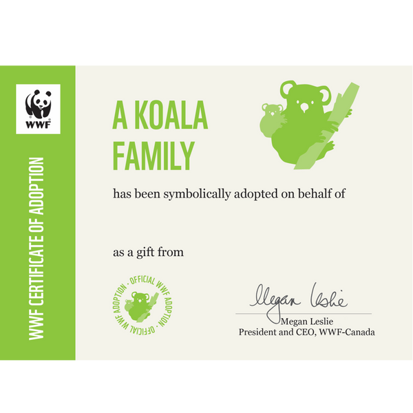 Koala family adoption certificate