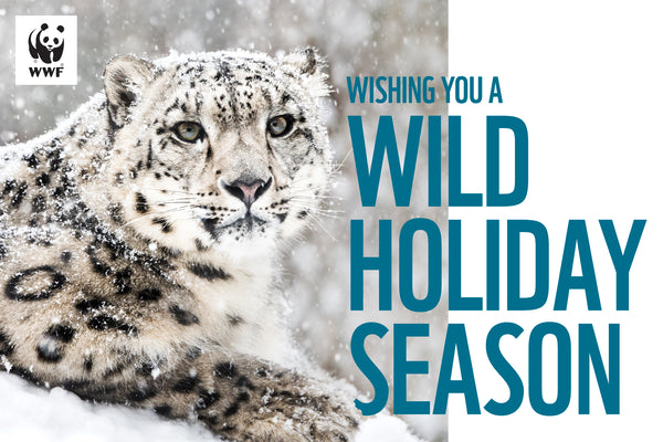 WWF-Canada Holiday Greeting Cards